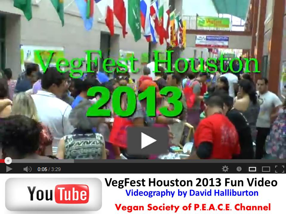 VegFest Houston 2013 Video David Halliburton